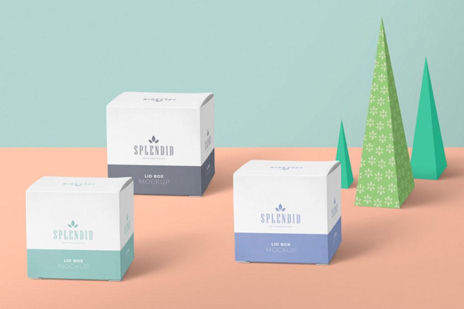Free Square Paper Box Mockup